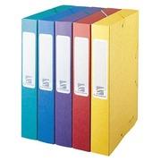 Pak 10 Cartobox-mappen Exacompta 24 x 32 cm met rug 3 cm + 10 Cartobox-mappen met rug 5 cm geassorteerde kleuren