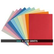 Pack 200 standard mappen 220 g Rainex 24 x 32 cm geassorteerde kleuren + 100 gratis