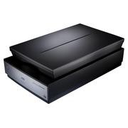 Epson Perfection V800 Photo - scanner à plat - modèle bureau - USB 2.0